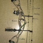 What Is A Compound Bow? – Power And Beauty Combined