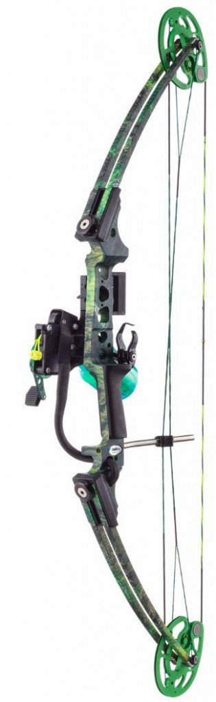 bowfishing compound bow