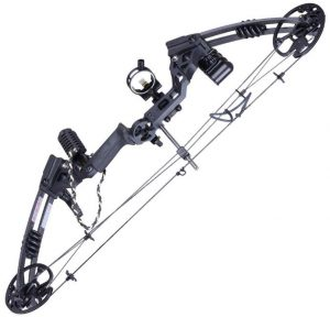 AWI Pro Compound Bow Kit Archery Set