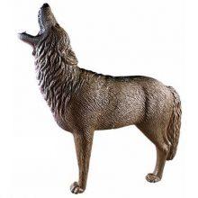 3d target coyote