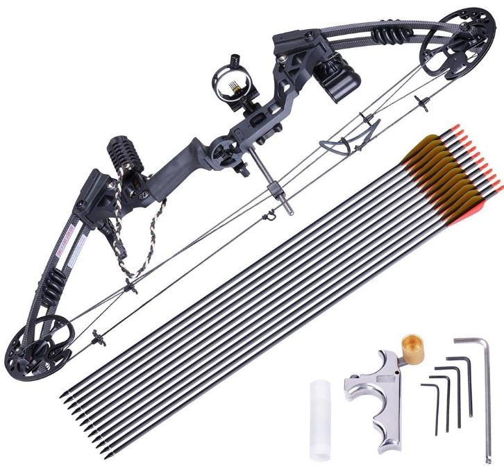 AWI Pro Compound Bow Kit Archery Complete Set